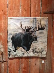 Bilde av Trend velourpute elg